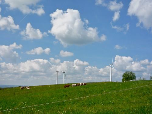 Freisen Hiil windmill vista