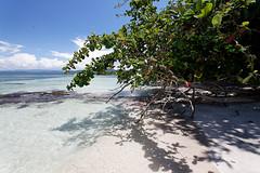 baudchon-baluchon-costa-rica-cahuita-39