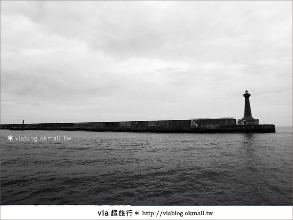 【花蓮賞鯨】花蓮玩樂趣~花蓮賞鯨之旅8