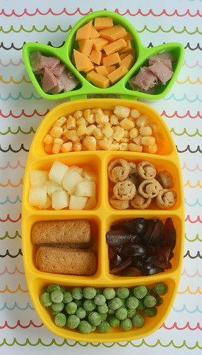 dr. sears nibble tray