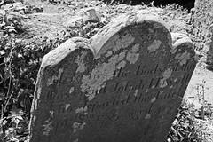 Rest (Terry Moran aka Tezzer57) Tags: ireland tinternabbey cowexford canon400d