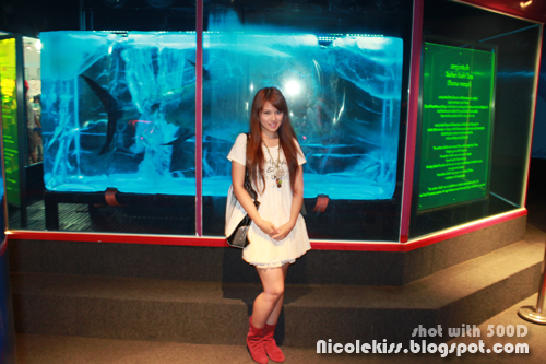 posing with a giant tuna