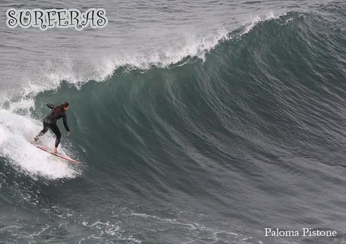Paloma/PuntadeLobos2