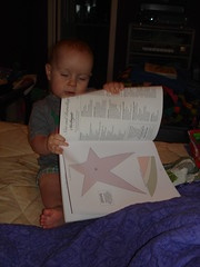 The book that the ABC pattern is in... My helper had to take a look at it. (You can see the applique for the S is for Star there are only a few appliques - helps to square up the 26 letter alphabet.)