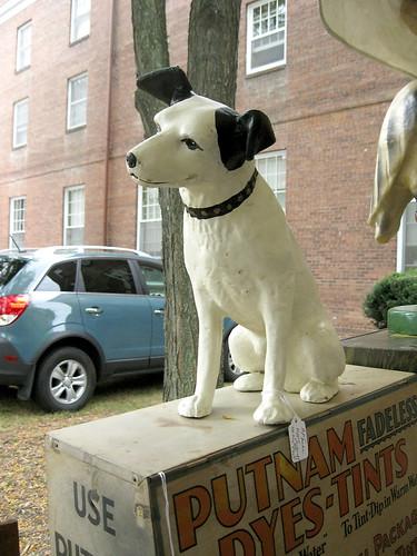 Western Reserve Academy 2010:  RCA dog.