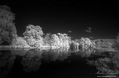 Autumnal Reflections (Martin_Finlayson) Tags: autumn trees water monochrome abbey reflections river ir nikon d70 gimp surrey infrared stark tamron hdr waverley wey photomatix 720nm 1024mm