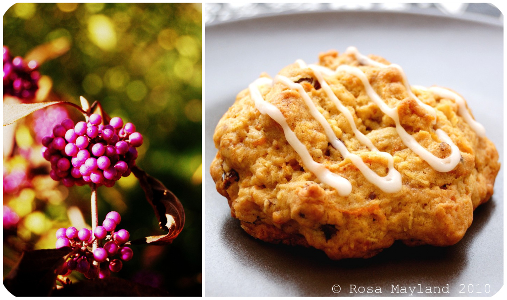 Carrot Cookies Picnik collage 3 bis