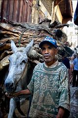 Invece di un camion (livia.com) Tags: strada morocco fez transportation marocco fes mulo asino pelli trasporto concia