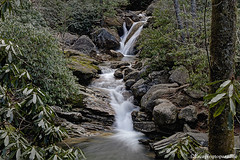 SkinnyDip+1_9289_fusw (nickp_63) Tags: skinny dip falls blue ridge parkway north carolina waterfall creek cascade long exposure nature scenic swimming hole platinumheartaward