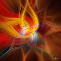 Bird of Paradise square Oil Twirl (caralan393) Tags: art experimantal oil twirl