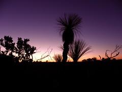 Stirling Range National Park, Western Australia (Kamelfisk) Tags: gmt flickrphotoaward