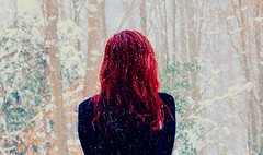 It was you that we were thinking of as we quietly died in the snow. (Explored!) (velvetveins) Tags: winter snow leaves redhair blizzard tress winterwonderland alkalinetriolyrics donnerpartylyrics