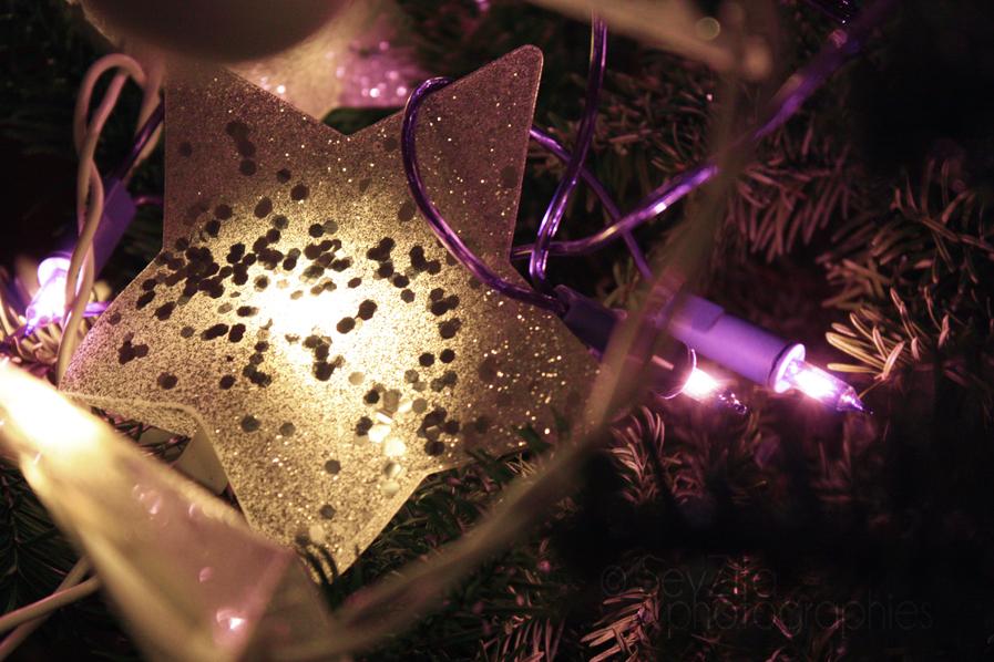 Noël 2009 #1
