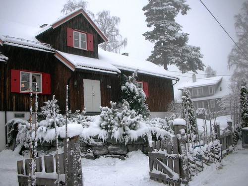 White Christmas in Oslo Norway #1