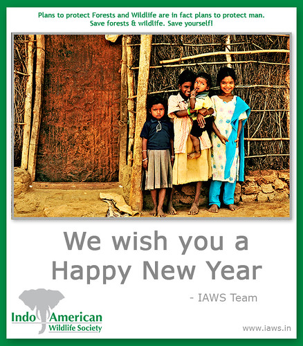 iaws-2010-new-year-wishes-1