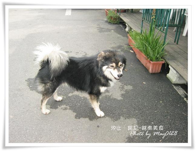2010.01.01-30越南.JPG