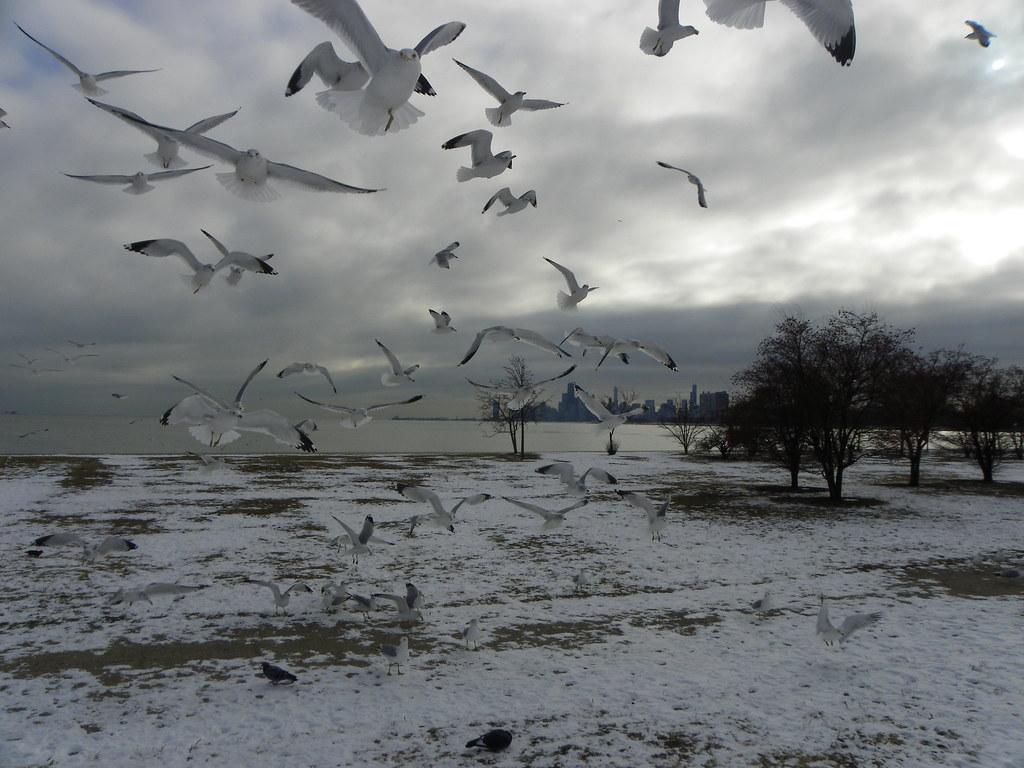 Lake Michigan by Martiger.com