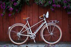 bike bicycle s retro rack shellac schmidt rim oc velocity... (Photo: Vélocia on Flickr)