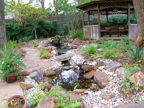 backyard backyard landscaping