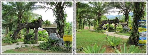Spa Village at Felda Residence Hot Springs, Sungkai (Sungai Klah Hot Springs Park)