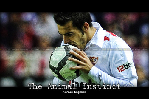 The Animal Instinct