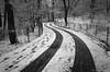 Cold Curves (CVerwaal) Tags: nyc newyorkcity winter snow newyork analog olympusstylusepic fuji centralpark curves tracks olympus ishootfilm oldschool stylus epic ramble fujisuperia