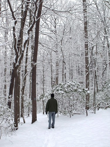 Matt in the snowy forest