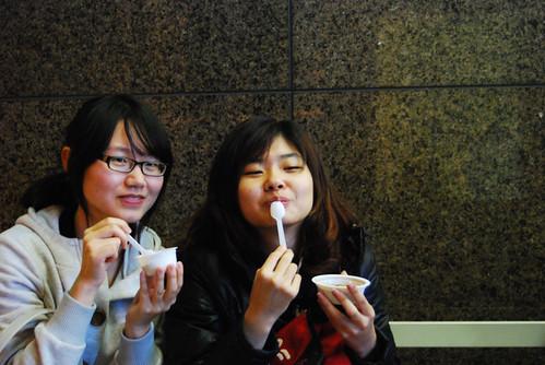 台南黑面琵鷺GO-2010020395
