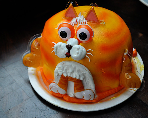 kitty cake.