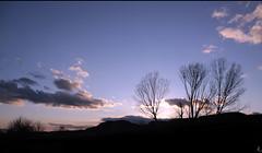Marzo (: metamorfosis :) Tags: naturaleza azul contraluz atardecer huesca negro cel natura cielo nubes árbol silueta blau arbre ocaso negre osca contrallum núvols nadie capvespre