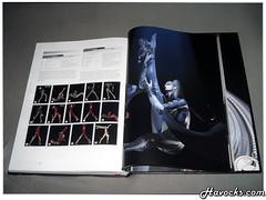 Guide Bayonetta - Collector - 02