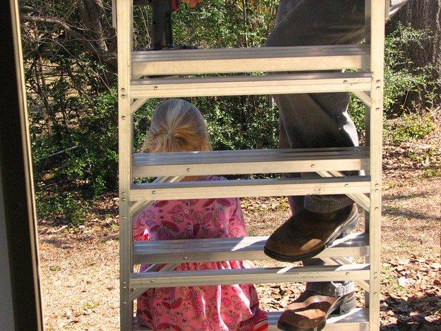 lizzy ladder1