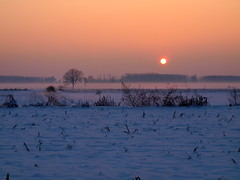 Tramonto.... (Lucy Fly Photo's) Tags: tramonto neve nebbia inverno atmosfera