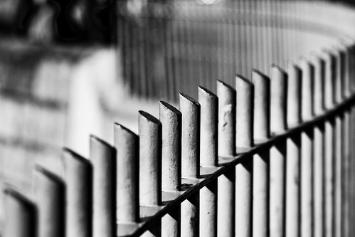 Patterns in a fence (by Steve-h)