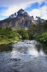 Cerro Paine Grande (tsubame) Tags: chile patagonia mountains southamerica andes torresdelpaine paine