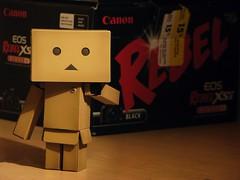 Back in the box? (willycoolpics.) Tags: canon rebel box picnik xsi danbo danboard