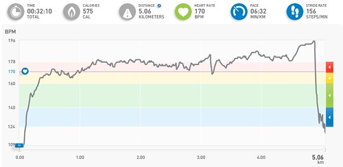 micoach race results