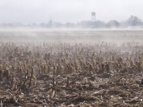 2010-03-23 Foggy-6