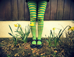 202/365 Primavera (sosij) Tags: selfportrait green yellow canon spring crossprocessed legs stripes retro 70s daffodils daffs sigma1020mm wickedwitch vintagey