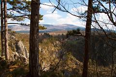 A view through the trees (Karmen Smolnikar) Tags: trees rocks village hills slovenia slovenija karst kras kocjan matavun kocjancavespark
