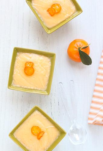 Crema de mandarines amb mel i mató