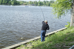 herastrau_fishing