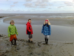 Wadlopen in Westernieland (Johan Koolwaaij) Tags: netherlands celltagged geotagged spring day cloudy sunday may dry moonlight groningen wadlopen rathercool westernieland gentlebreeze cell:mcc=204 cell:mnc=4 weather:temp=cold cell:lac=37 iyouit iyouitpostprocessed cell:cellid=10223 geo:range=00 geo:lat=53420713 location:dayhour=13 location:maxspeed=80 weather:feel=verycold location:continent=europe location:timezone=1 weather:humidity=high weather:pchange=steady weather:tstorm=low weather:uv=low weather:uvmax=low weather:visibility=high weather:coverage=high weather:realfeel=cold weather:pressure=moderate weather:dir=north weather:moonstate=waningcrescent location:nstep=0 location:nbike=22 geo:long=6489497 location:postalcode=9969 location:street=schaapweg location:distance=135261