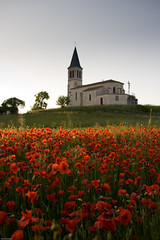 Eglise de Saint-Cevet (Lot, Midi-Pyrénées, France) (-CyRiL-) Tags: france lot crépuscule campagne blanc paysages eglise coucherdesoleil plantes coquelicot patrimoine quercy papaveraceae midipyrenees sudouest papaverrhoeas ranunculales végétaux végétal fontanes geocity dicotylédones lotdepartment camera:make=canon camera:model=canoneos400ddigital exif:make=canon exif:focal_length=21mm exif:iso_speed=100 edificereligieux cyrilbkl papaveracées departementdulot cyrilnovello angiospermes geostate geocountrys exif:model=canoneos400ddigital exif:lens=1802000mm religieuxculturel geo:lat=443363595 geo:lon=14895069