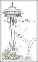 seattleDP seattleKitty400px