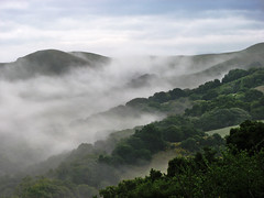 Morning Comes Softly (skipmoore) Tags: california park morning mist fog richmond openspace clearing wildcatcanyon contracostacounty