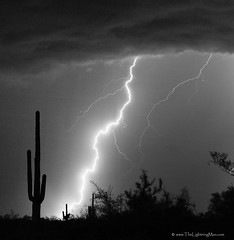 Lightning Strike in Black and White (Striking Photography by Bo Insogna) Tags: sky cloud white black rain weather electric night clouds skyscape dangerous energy power flash extreme ground nightime monsoon electricity static prints rod strike bolts lightning lightening striking storms spark charge strikes thunder typhoon voltage thunderstorms thunderhead discharge severeweather thunderbolt timedexposure chasers thundershower lightningstorm lightningstrikes cloudtoground cloudtocloud lightningimages lightningphotography lightningpictures lightningphotos lightningstorms insogna thelightningman extreameweather lightninggallery lightningposter pictureoflightning lightningstormpictures picturesofstormcloudsandlightning lightningartlightneninggallery lightningphotogalleries lightningboltphoto landscapecanvasprints blackandwhitelightningphotographyprints imagelightningpicturesphotograph monsoondesert