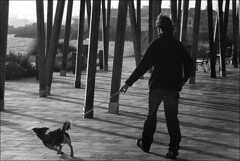 (Raymond Wealthy) Tags: ca street people blackandwhite bw españa white black blancoynegro blackwhite calle spain nikon europe mood gente emotion noiretblanc walk streetphotography poetic bn perro espana rue espagne hombre spanien gens noirblanc streetshot blanconegro photogallery poetical lagente nikond80 blancoenegro blancoenero raymondwealthy