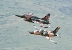 Formacion Mixta (sjpadron) Tags: plane airplane freedom nikon fighter venezuela aircraft aviation military jet formation fav airforce f5 avion caza vuelo canadair venezolana formacion venezuelan jiangxi aviacion militaryaircraft northrop karakorum griffo vf5 freedomfighter d700 nikond700 hongdu jl8 ambv sjpadron northropvf5b vf5b abmv k8w jiangxihongduk8 jiangxihongduaviation mixedformationflying k8karakorum