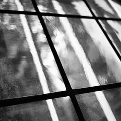 Dirty Window (Ethan in Zrich) Tags: bw white black window lines blackwhite blurry diagonal bold